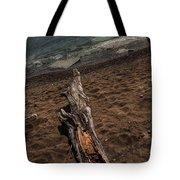 Washed Ashore Tote Bag