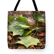 Washed Up Leaves Tote Bag