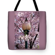Washington Cherry Blossoms And A Lantern Tote Bag