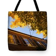 Washington D C Facades - Reflecting On Autumn In Georgetown  Tote Bag