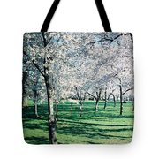 Washington Dc Cherry Blossoms Tote Bag
