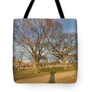 Washington Dc Mall Tote Bag