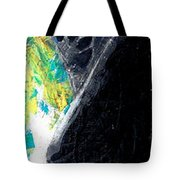 Washington Eagle Two Tote Bag