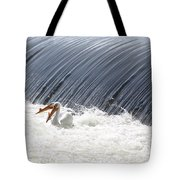 Washington White Pelicans Tote Bag