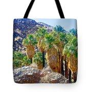 Washingtonian Fan Palm Grove Along Lower Palm Canyon Trail Near Palm Springs-california  Tote Bag