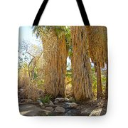 Washingtonian Fan Palms With Large Skirts In Andreas Canyon-ca Tote Bag