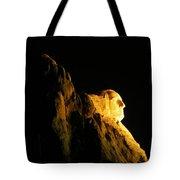 Washingtons Profile At Night Tote Bag