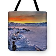 Washoe Ice Tote Bag