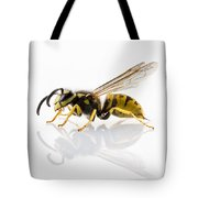 Wasp Isolated  Tote Bag