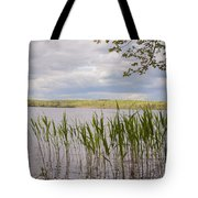 Watchaug Pond Tote Bag