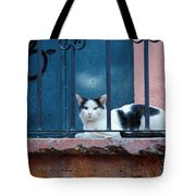 Watchful Cat, Mexico Tote Bag