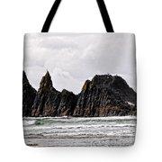 Watchful Eye Of Seal Rock Tote Bag