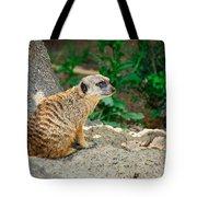 Watchful Meerkat Tote Bag
