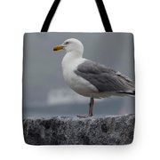 Watchful Seagull Tote Bag