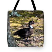 Watching From The Forest Tote Bag