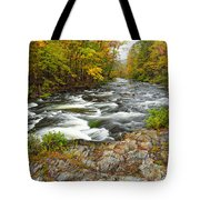 Watching It All Go By  At Beaver's Bend Broken Bow Fall  Foliage Oklahoma Tote Bag