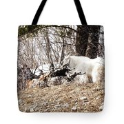 Watching My Flock Tote Bag