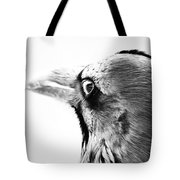Watching The Night Tote Bag
