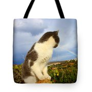 Watching The Rainbow Tote Bag