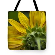 Watching The Sun Tote Bag