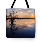 Watching The Sunset At Ba Steinhagen Lake Martin Dies Jr. State Park - Jasper East Texas Tote Bag