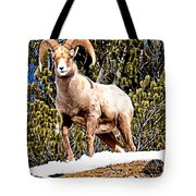 Watching The Valley Tote Bag