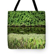 Water And Green Tote Bag