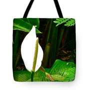 Water Arum In Park Across From Wat Phrathat Doi Suthep In Chiang Mai-thailand. Tote Bag