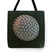 Water Bear Egg Tote Bag by Eye of Science and Science Source