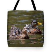 Water Buddies - Female Mallards Tote Bag