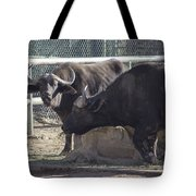 Water Buffalo - 2 Tote Bag