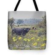 Water Buffaloes At Corroboree Billabong Tote Bag