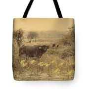 Water Buffaloes At Corroboree Billabong V2 Tote Bag