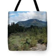Water-carved Base Rock And Mt Baldy Tote Bag