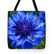 Water Color Bachelor's Button Tote Bag