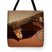 Water Drop On A Branch Tote Bag
