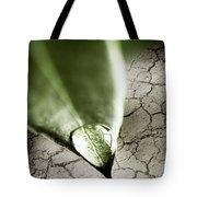 Water Drop On Green Leaf Tote Bag