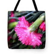 Water Droplets On Carnations Tote Bag by Janice Byer