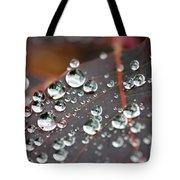 Water Drops On Cotinus Tote Bag