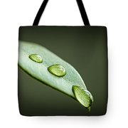 Water Drops On Green Leaf Tote Bag