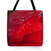 Water Drops On Tulip Tote Bag