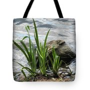 Water Fern Tote Bag