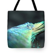 Water Globe Tote Bag