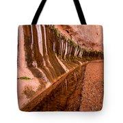 Water Is Life - Coyote Gulch - Utah Tote Bag