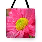 Water Kissed Pink Chrysanthemum 2 Tote Bag