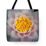 Water Lillies Macro Tote Bag