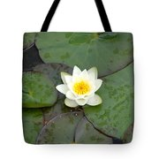 Water Lily - White Tote Bag