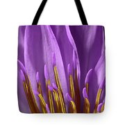 Water Lily-0005 Tote Bag