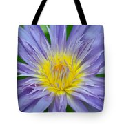 Water Lily 16 Tote Bag
