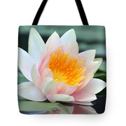 water lily 45 Water Lily with Reflection Tote Bag